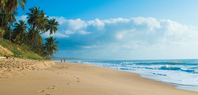 Praia do Forte Verano 2019