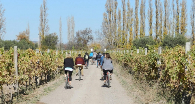 Mendoza Wine Bike Tour Promo exclusiva de Baja Temporada